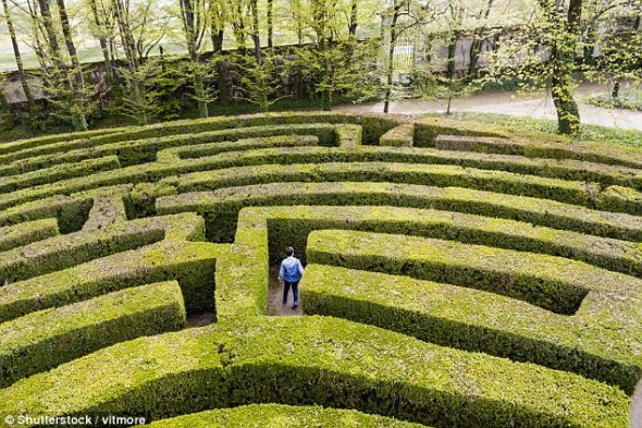 person in maze