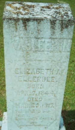 Elizabeth A Hayes Ellerbee