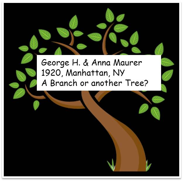George_Anna_branch or tree