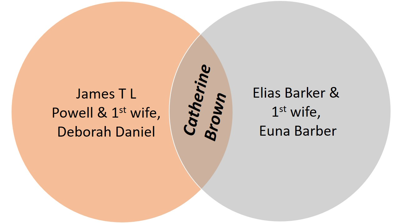 venn diagram_blended family_copy2
